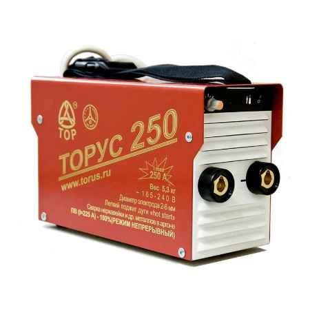 Купить Сварочный инвертор ТОРУС-250 ЭКСТРА (НАКС)